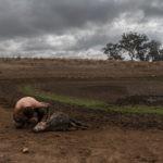 impacto de la crisis climática
