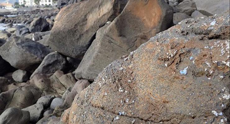 Plasticrust en la costa de la isla de Madeira