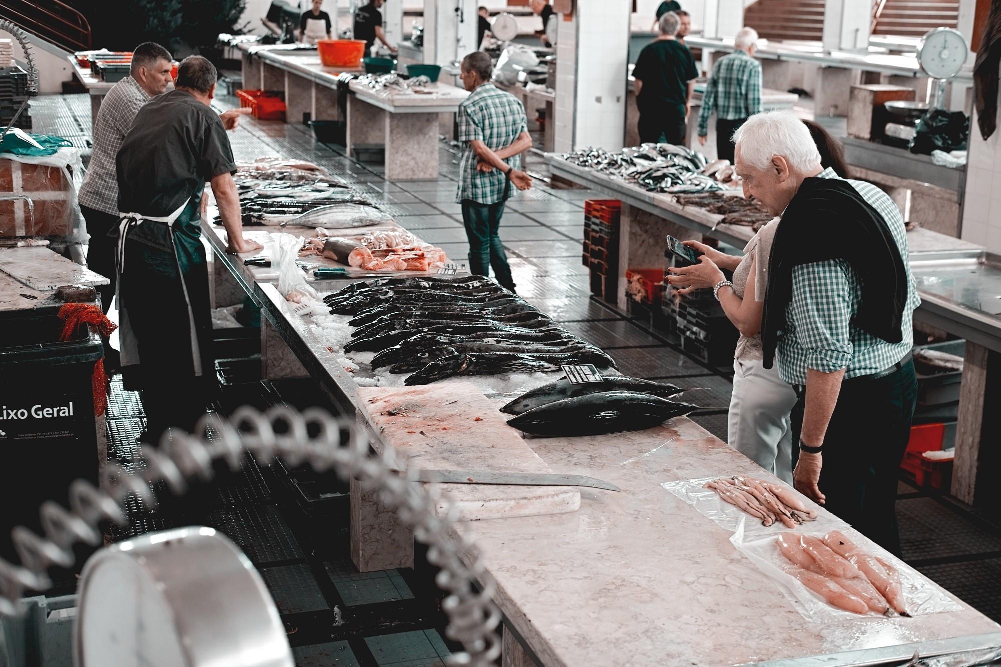 El pescado también pasa los controles sanitarios de alimentos