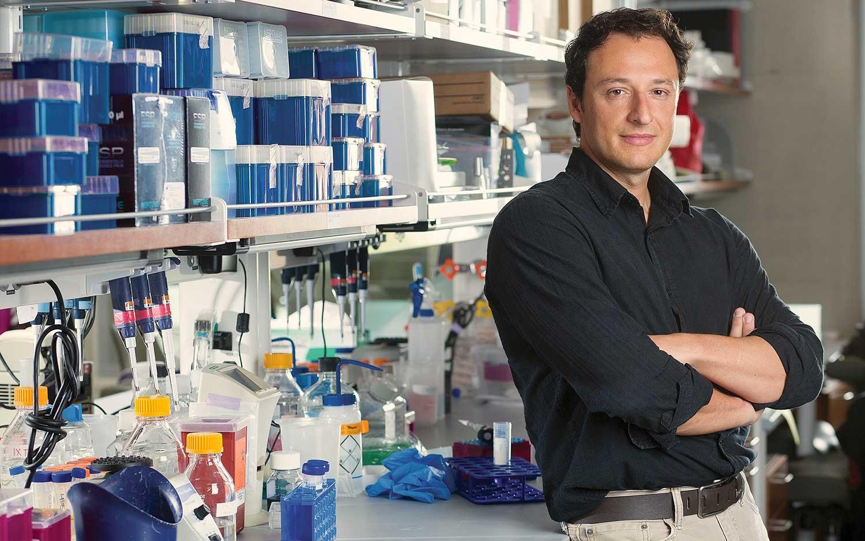 El profesor Alysson R. Muotri en su laboratorio. Imagen de la UC San Diego.