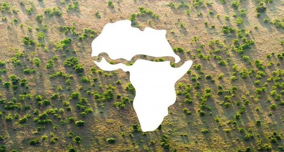 Green Wall: una gran cadena de árboles del oeste al este de África.
