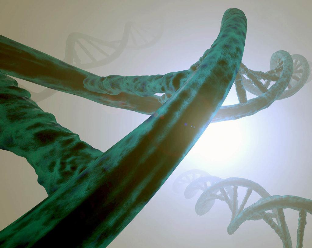 CRISPR en humanos