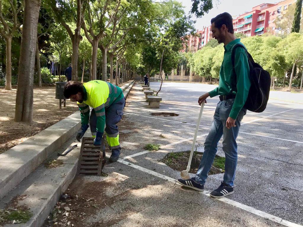 medidas de control la presencia del dengue en España
