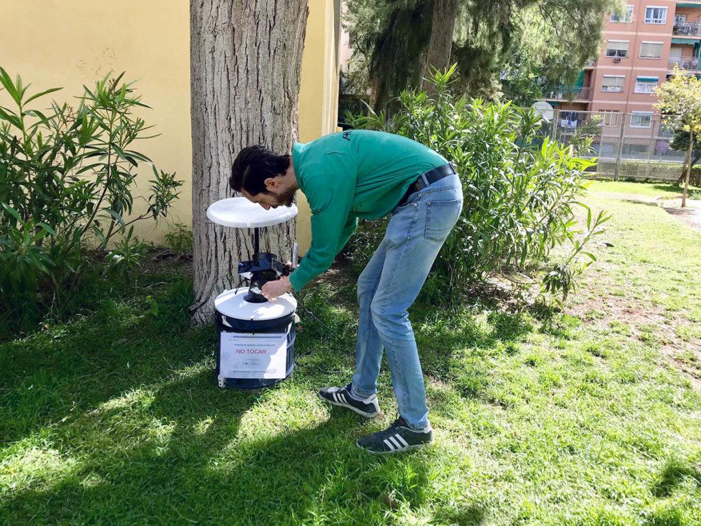trampas para medir la presencia del dengue en España