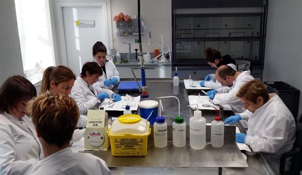 investigadores de la Universidad del País Vasco