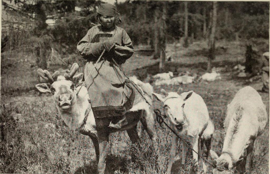 pastores de renos de mongolia hace 100 años
