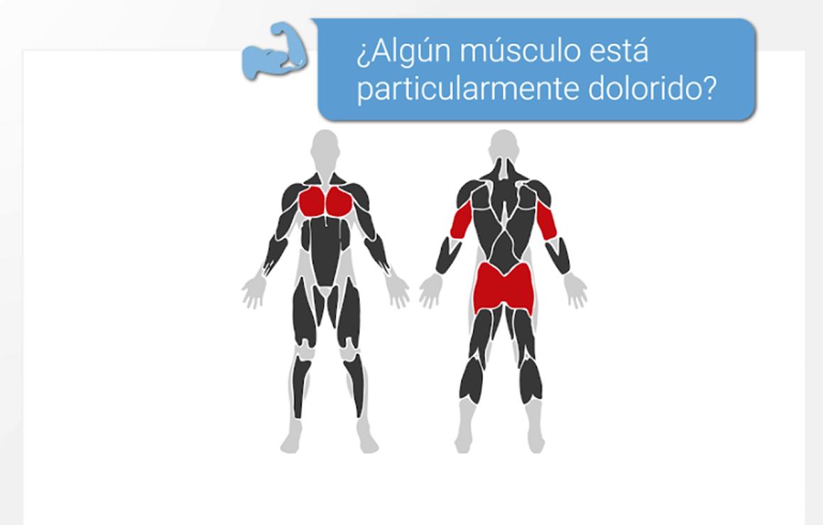 bodbot app ejercicio