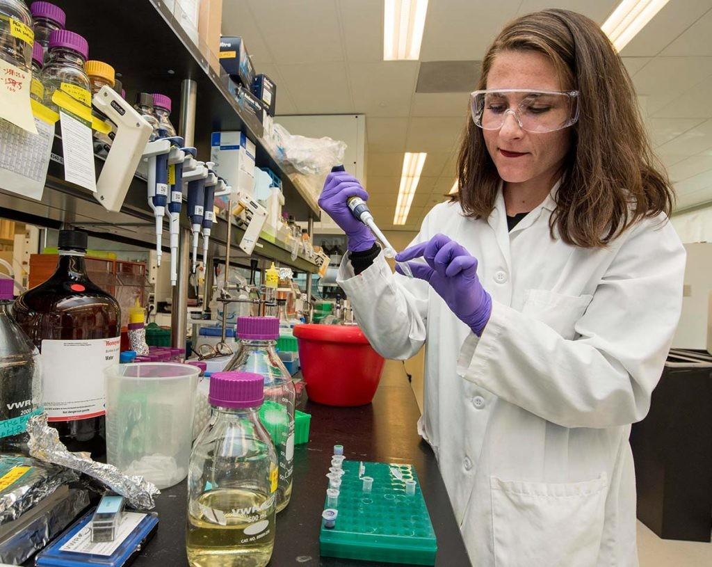 personalidad en el trabajo, así son los científicos