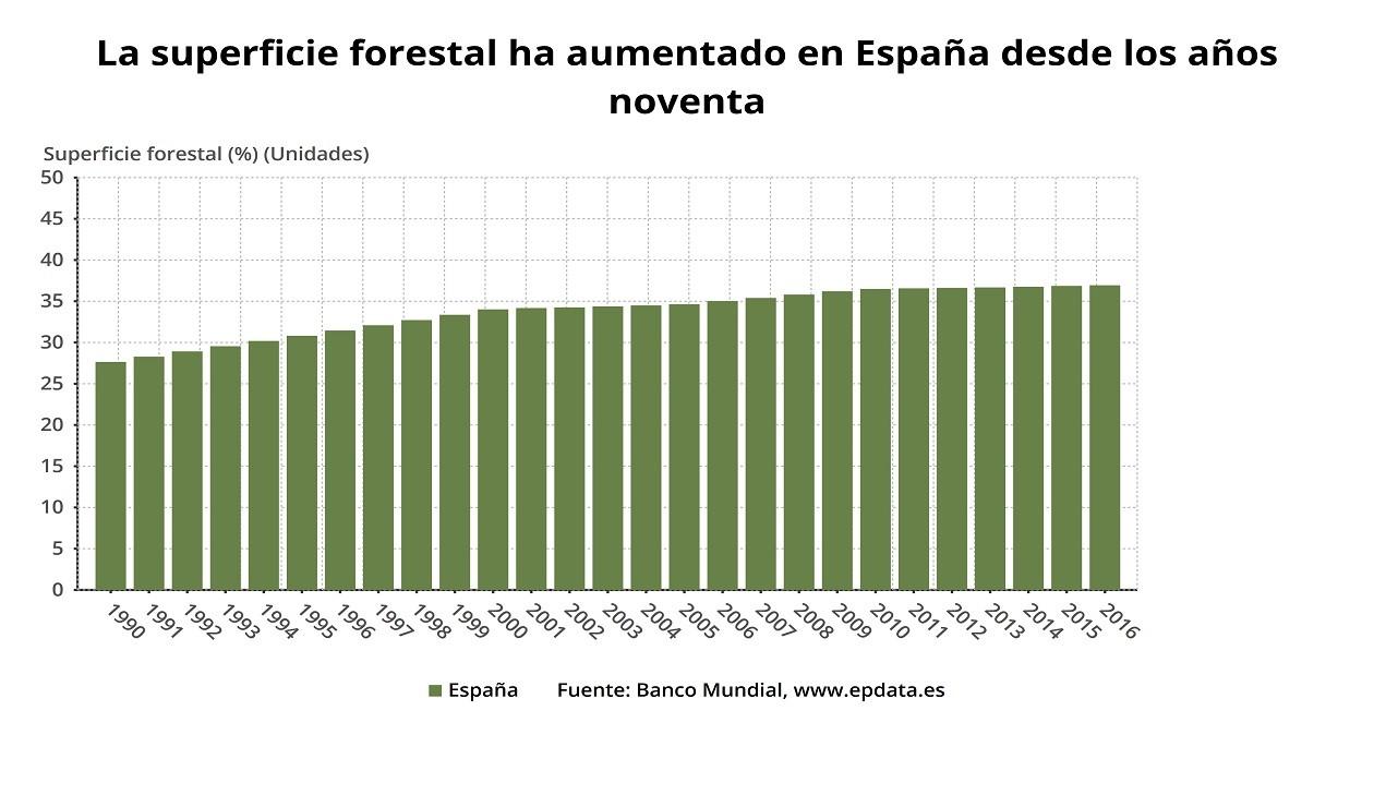 Superficie de bosques en España