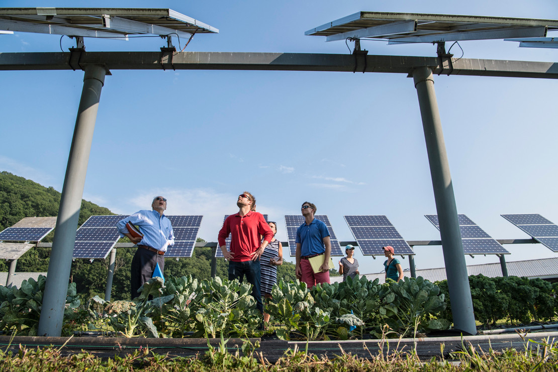 revision planta solar