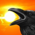 la paradoja del cuervo en la ciencia