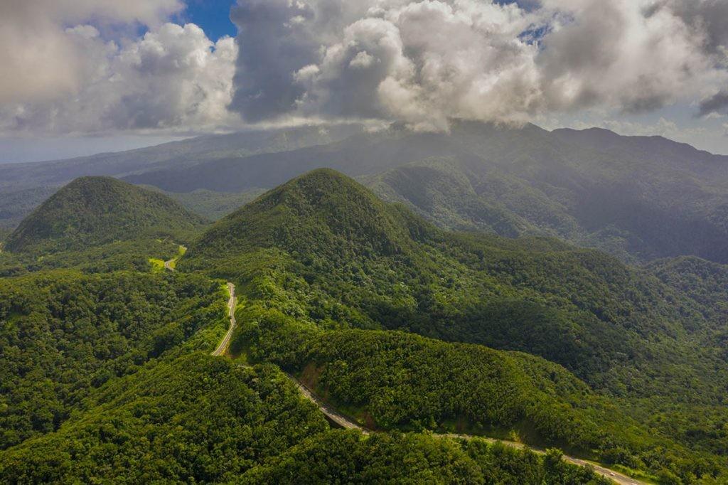 día mundial del medioambiente centrado en la biodiversidad