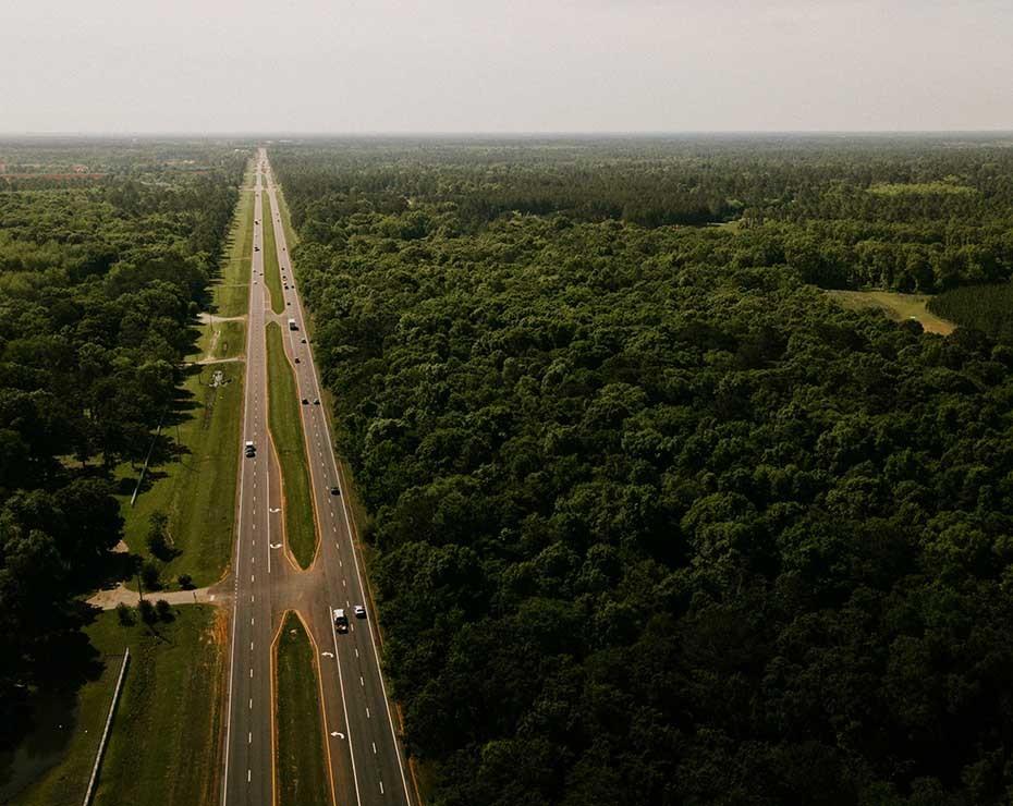 """Felipe Bravo: """"si no hacemos nada, lo más probable es que los bosques sufran colapsos o degradaciones y que sea difícil recuperarlos""""."""