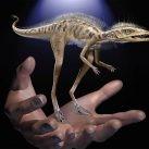 dinosaurios minúsculos