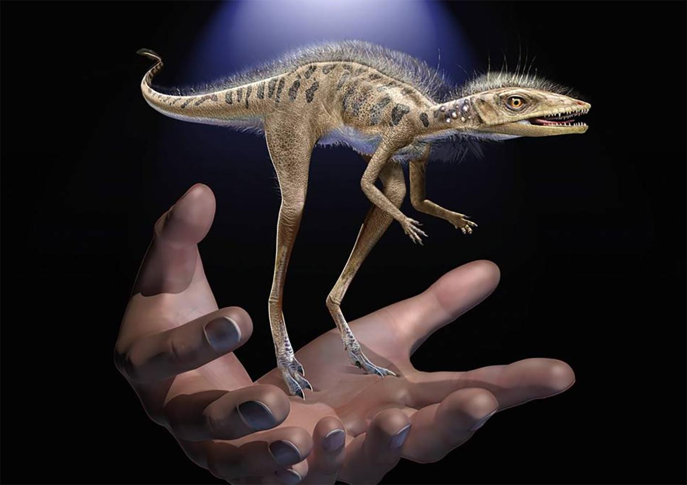 dinosaurio minúsculo