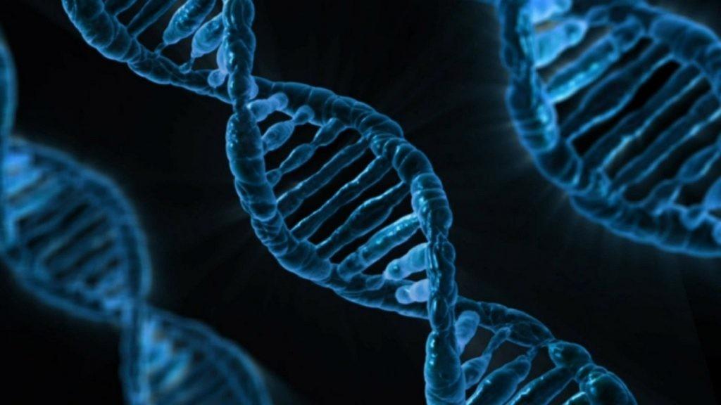 Imagen ADN