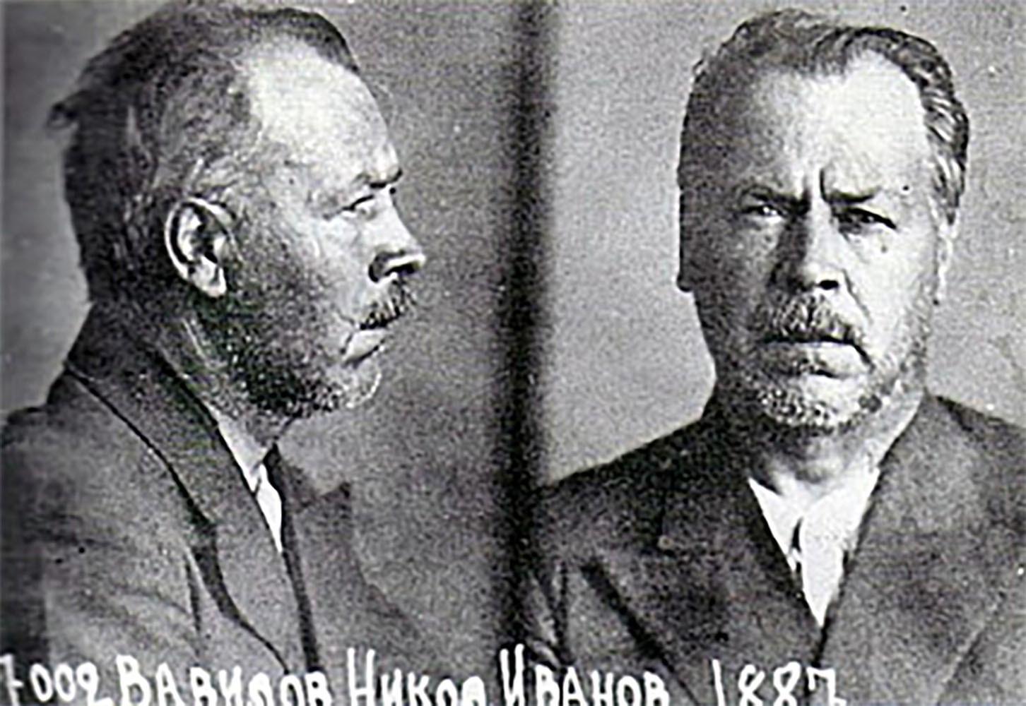 Imagen de Nikolái Vavílov en prisión