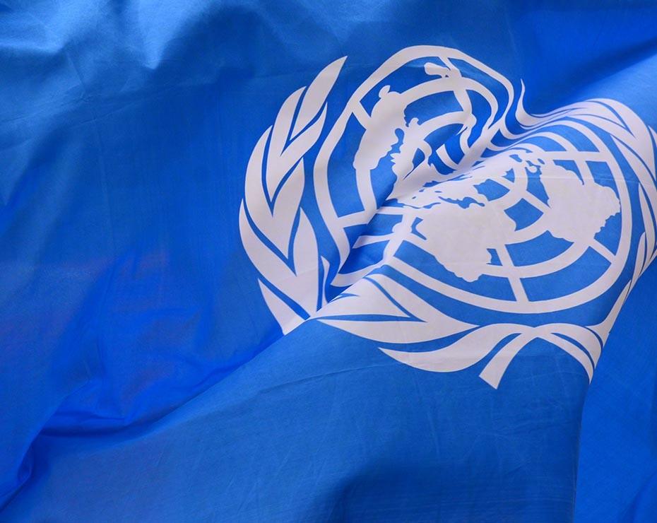 unidad mundial ods estos anos