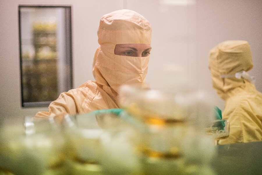 laboratorio de Zendal