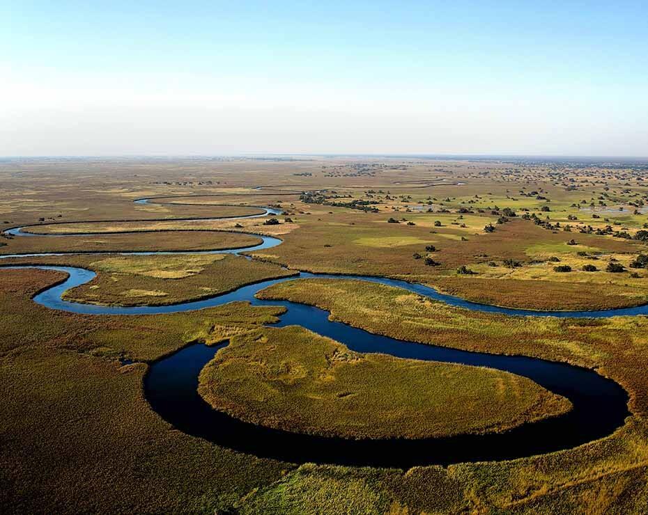 Las muertes de elefantes en Botsuana se concentraron en el delta del Okavango.