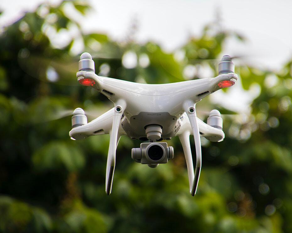 Los drones pueden servir para detectar cambios en la vegetación en grandes superficies de terreno.