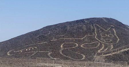 gato en Nazca