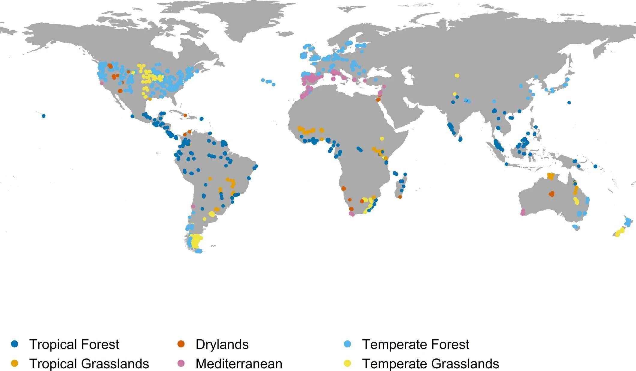 mapa con las zonas con más animales extintos del planeta. Destaca el mediterráneo y los trópicos