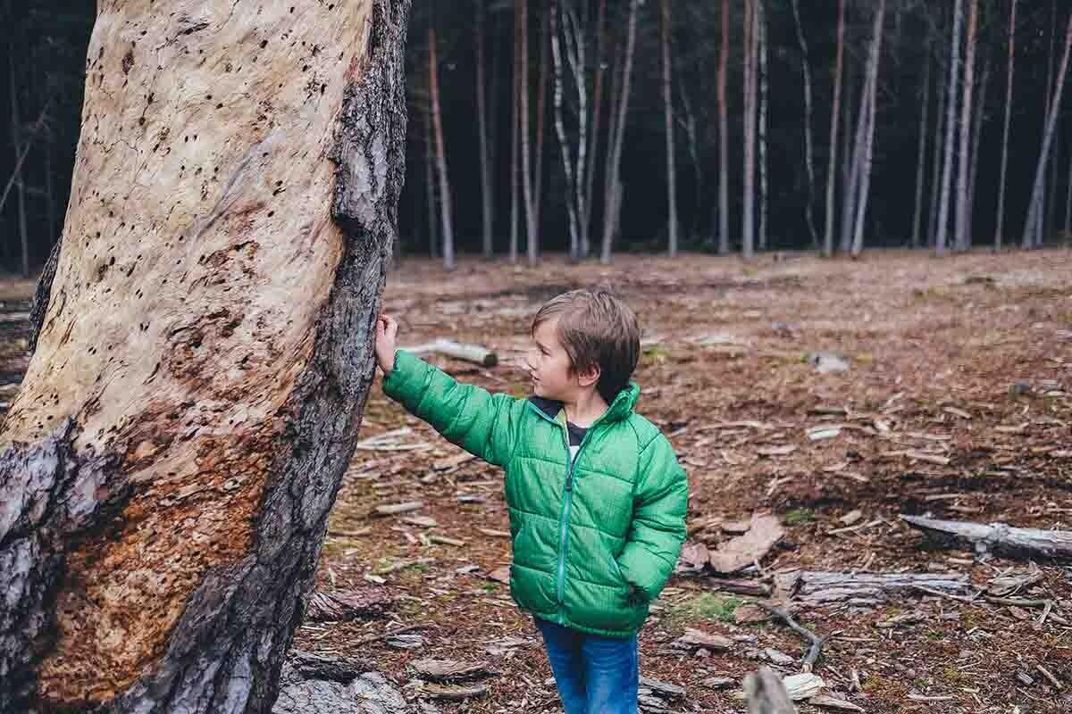 Para estas escuelas, es importante educar en valores como el respeto por la naturaleza..