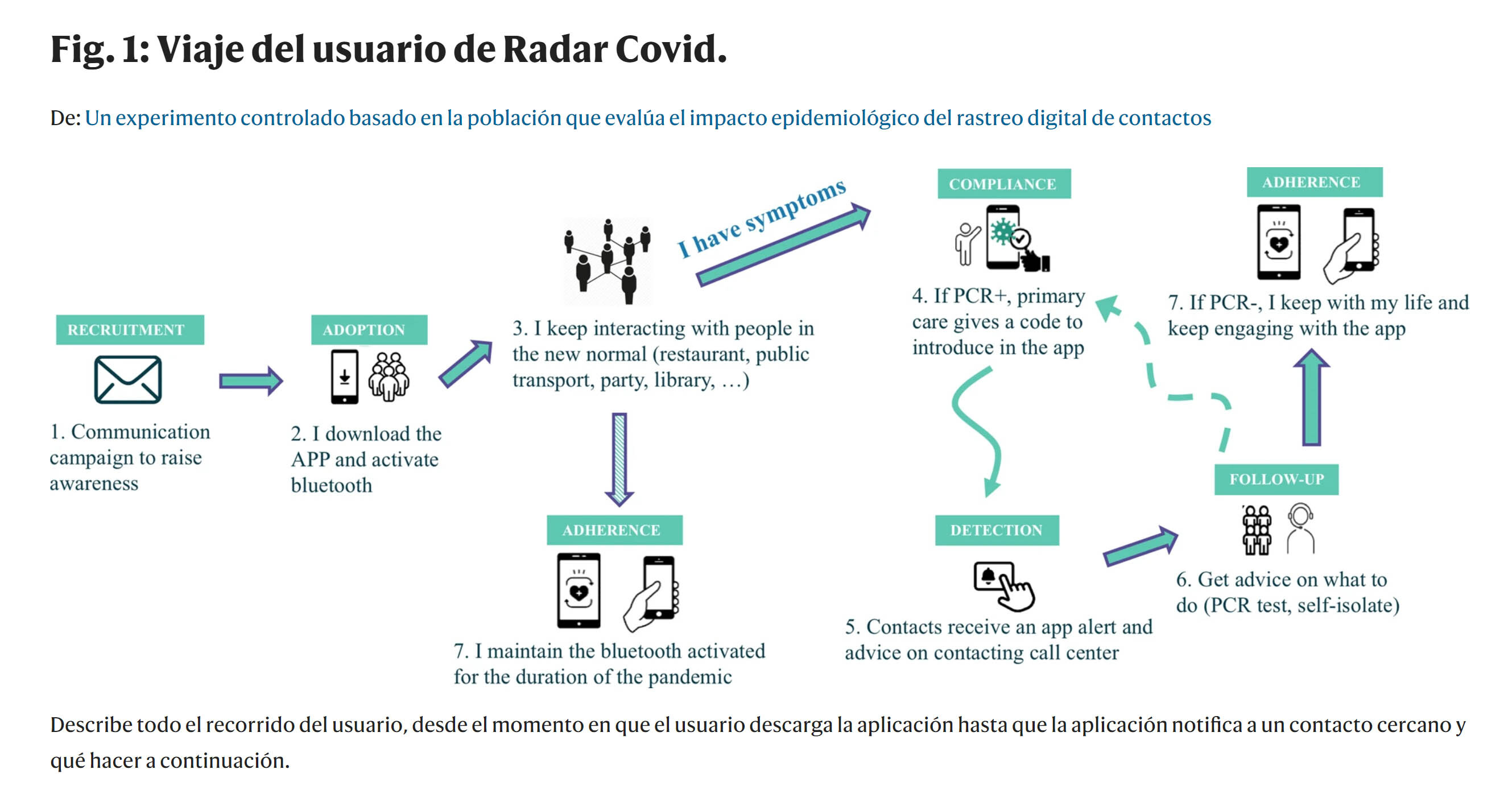 radar covid Nature
