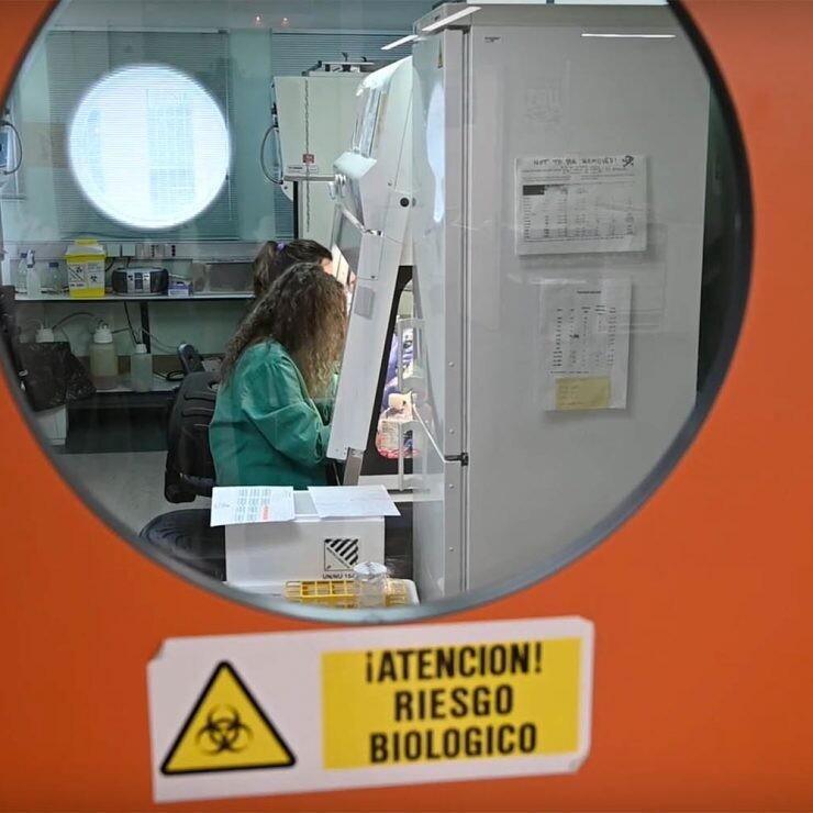 vacuna española