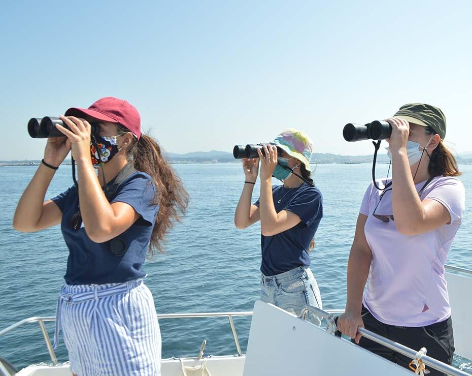 A lo largo del 2020, el proyecto Balaenatur realizó un seguimiento de las ballenas azules en Galicia.