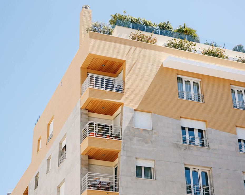 mejora bienestar pandemia plantas en casa