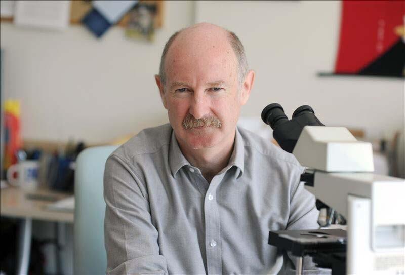 Rafael Yuste en su laboratorio