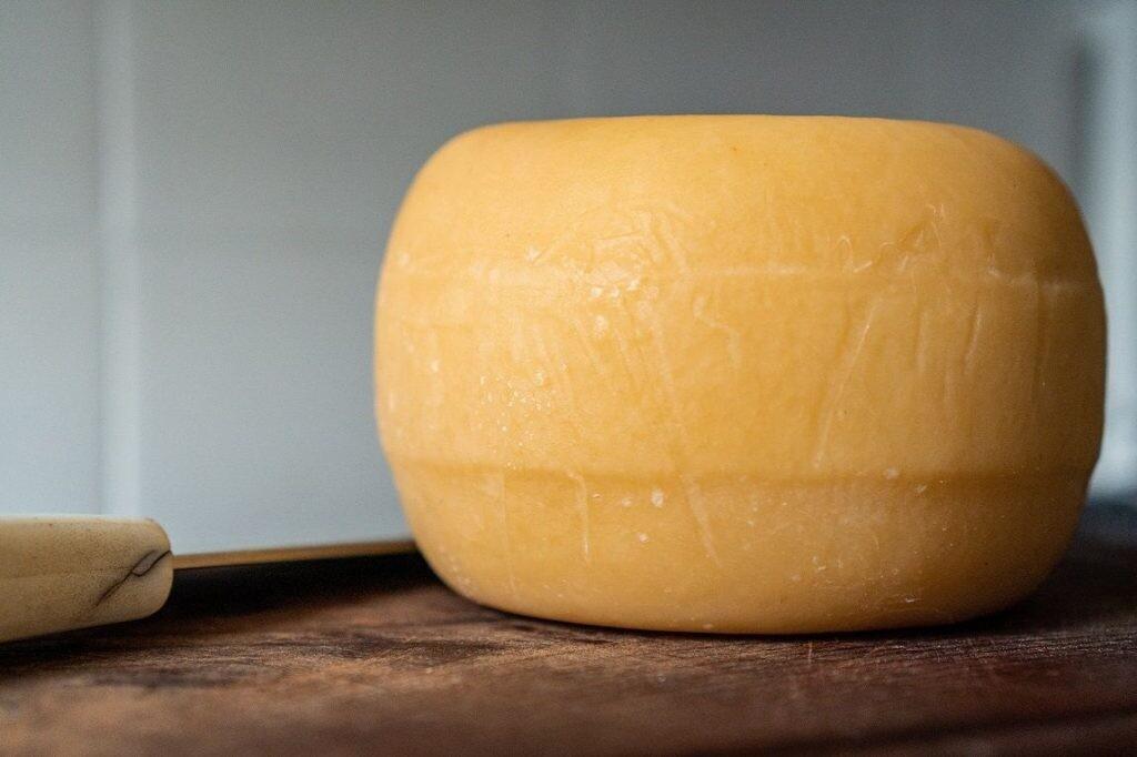 Alimentos procesados: el queso