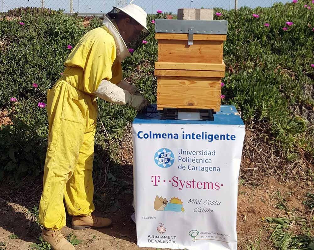 colmenas inteligentes en Cartagena