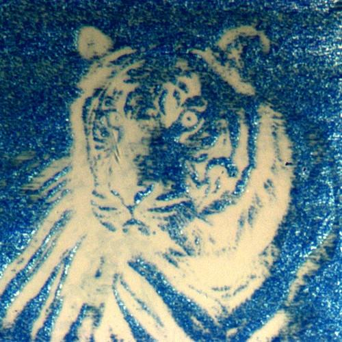 Tigre Nanopíxeles