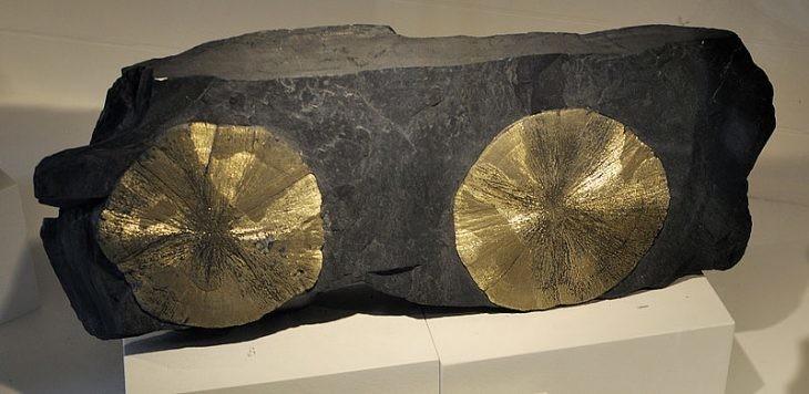 pirita del museo de harvard