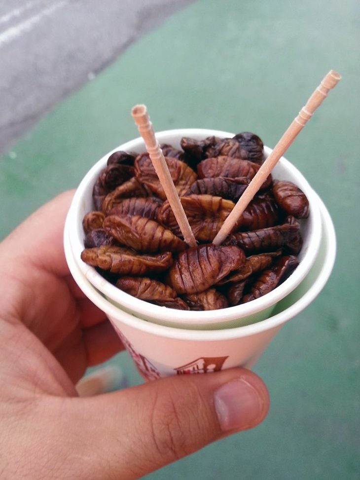 comida insectos asia