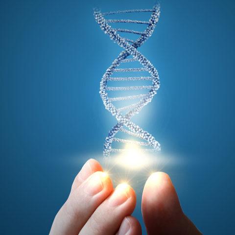 genetica genes edicion cura medicamento