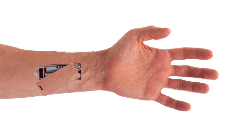 La anguila eléctrica, clave en el futuro ciborg - Blog Lenovo