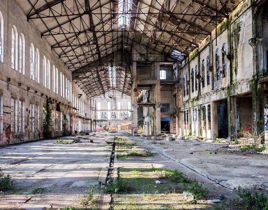 edificio derruido naturaleza plantas