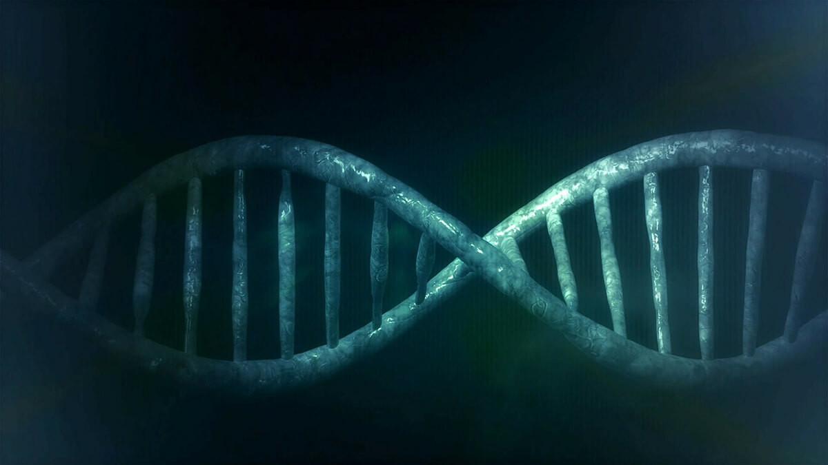 virus en el ADN