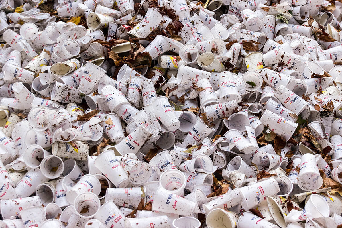 bacteria que come plastico