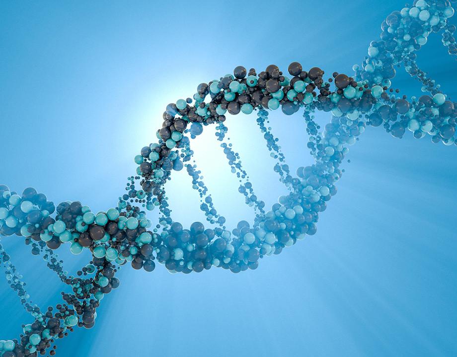 test-adn-de-donde-eres-molecula