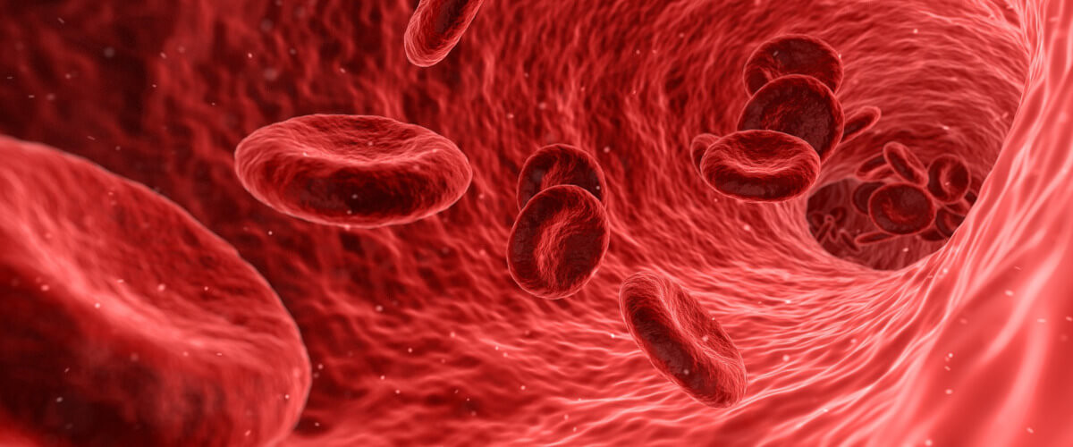 avances en regeneración celular