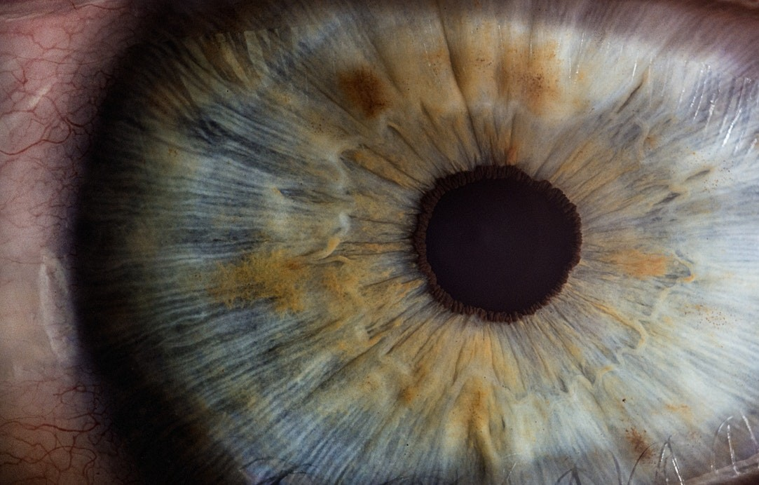 identificador biometrico ojos