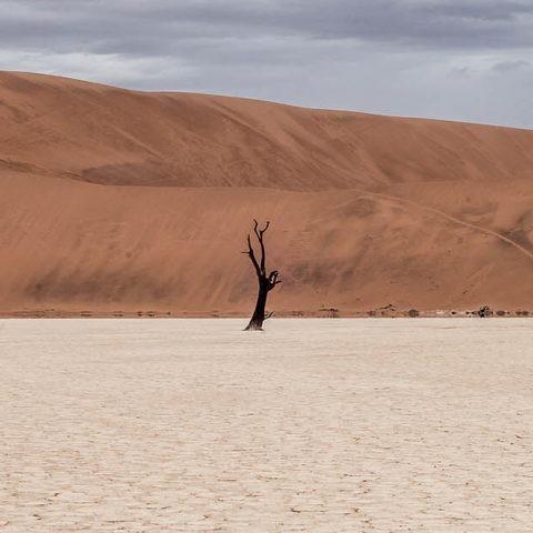 MareNostrum y cambio climático