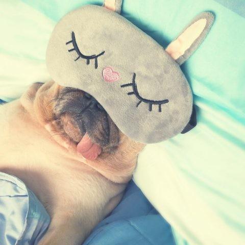 Te presentamos la mejor tecnología para dormir como un bebé.