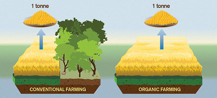 agricultura-ecologica-y-cambio-climatico-uso-del-terreno
