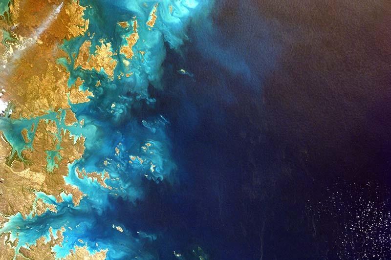 El cambio de color es una de las consecuencias del cambio climático en los océanos.